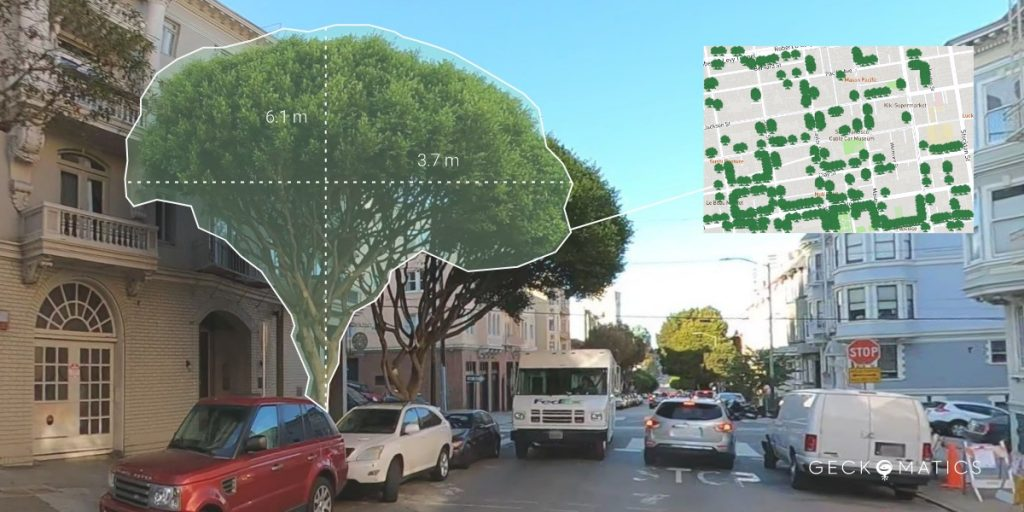 tree detection